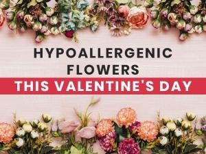 Hypoallergenic Valentines Day Flowers