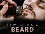 How To Trim Beard
