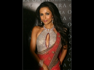 Malaika Arora S Most Expensive Diamond Blouse With Red Saree