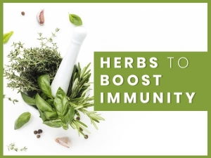 Kitchen Friendly Herbs To Boost Immunity During Covid