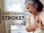 Stroke Causes Symptoms Treatment Prevention