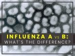 Influenza A Vs B Differences Symptoms Treatment Prevention