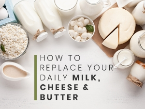 Non Dairy Substitutes For Milk Cheese Butter