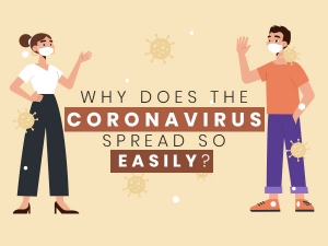 Why Does The Coronavirus Spread Quickly Attacks Human Cells Easily