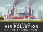 Effects Of Air Pollution On Environment