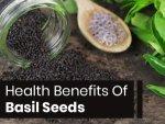 Basil Seeds Nutrition Benefits Uses Recipes