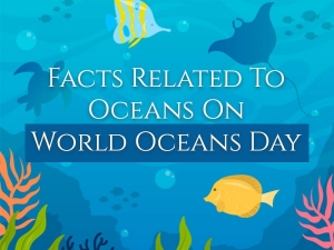 World Oceans Day Facts About Oceans