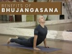 Health Benefits Of Bhujangasana Cobra Pose