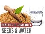 Health Benefits Of Fenugreek Seeds And Fenugreek Water