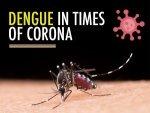 Covid 19 And Dengue Common Symptoms