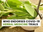 Who Promotes Covid 19 Herbal Medicine Trials