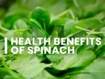 Spinach Nutrition Health Benefits And Recipe