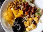 Oil Free Plant Protein Power Salad