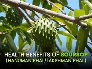 Health Benefits Of Soursop Hanuman Phal