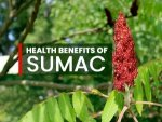 Health Benefits Of Sumac Treating Covid19 Symptoms Managing Diabetes