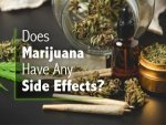 Effects Of Marijuana On Body Mind