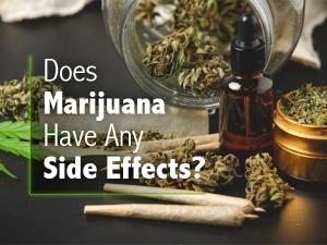 Effects Of Marijuana On Body Mind