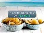 Health Benefits Of Sea Moss Side Effects And How To Consume