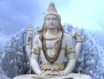 Maha Shivratri 2021 Flowers That You Can Offer To Lord Shiva