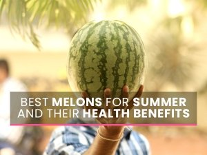 12 Best Melons For Summer And Their Amazing Health Benefits With Recipes
