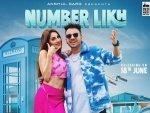 Khatron Ke Khiladi Contestant Nikki Tamboli S Pink Outfit In Number Likh Song Poster