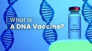 What Is A DNA Vaccine? How Is It Different From Other Vaccine Types?