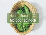 Health Benefits Of Malabar Spinach Good For Digestion Fertility Heart Cancer Recipe