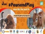 Josh App And Mash Project Foundation Launch Pawsandplay Campaign