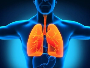14 Best Foods For Lung Cleansing