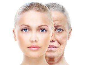 How Antioxidants Prevent Skin Aging?