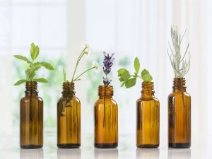 Essential Oils That Remove Stretch Marks