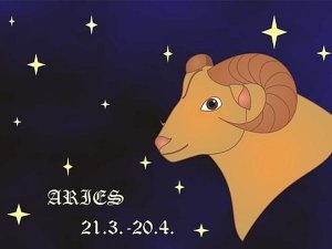 Zodiac Signs That Are Known For Being Practical