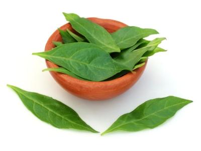 Health Benefits Of Henna Leaves
