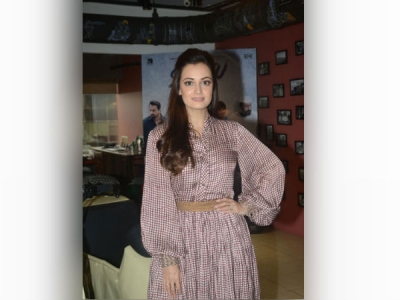 Dia Mirza Looks Drab In This Dress