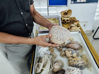 India's First Ever Brain Museum