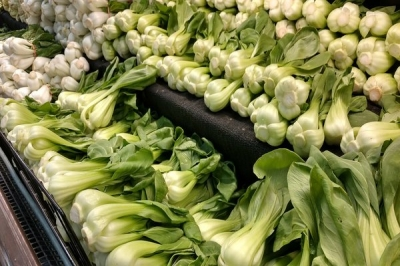 What Is Bok Choy?
