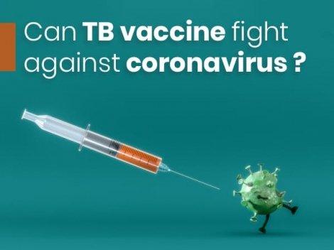 Can TB Vaccine Fight Against Coronavirus? What Do Studies Say?