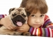 How Kids Should Behave With Dogs