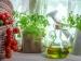 10 Kitchen Herbs To Treat Various Diseases