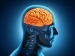 2 Kitchen Ingredients That Can Help Improve Your Memory!