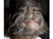 List Of Incredibly Hairy People